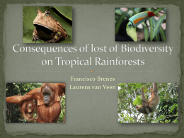 Consequences of lost of Biodiversity on Tropical Rainforests