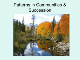 Patterns in Communities - Sonoma Valley High School