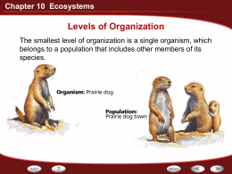 Chapter 10 Ecosystems Levels of Organization