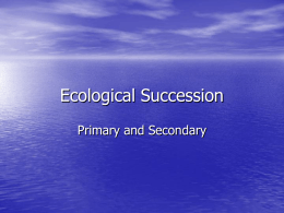 Ecological Succession Powerpoint