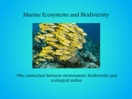Ecosystems and Biodiversity