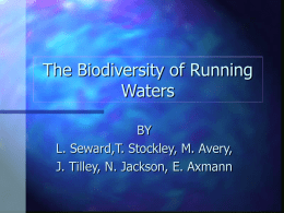 The biodiversity of Running Waters