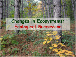 Ecological Succession What is Ecological Succession?