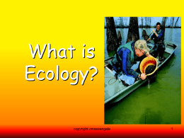 Intro To Ecology/Energy Flow/Cycles