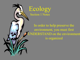 Ecology Section 1 Notes