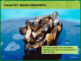 Lesson 5.2 Species Interactions
