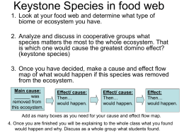 Keystone Species in food web