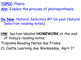 TOPIC: Plants AIM: What is photosynthesis?