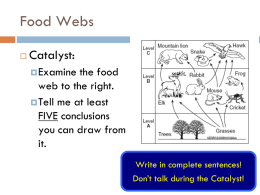 Food Webs - JhaveriChemBioWiki