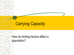 carrying capacity and paramecium aurelia population