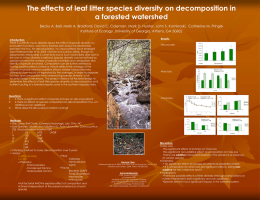 The effects of leaf litter species diversity on decomposition in a