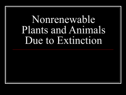Nonrenewable Plants and Animals Due to Extinction
