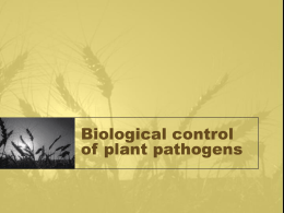 Biological control of plant pathogens