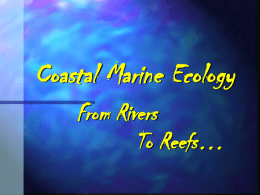 Coastal Marine Ecology - Artifact2