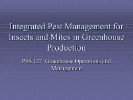Integrated Pest Management for Greenhouse Production