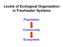 Levels of Ecological Organization in Freshwater Systems Population