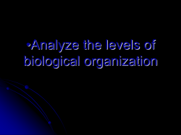 Analyze the levels of biological organization