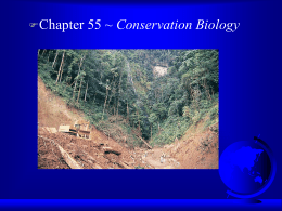 Ch 55 Conservation Biology