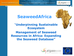 Africa Seaweed Database Introduction