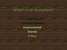 What`s in an ecosystem? - dpsrenenvironmentalscience