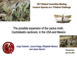 Opuntia - Trilateral Committee for Wildlife and Ecosystem