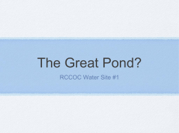 The Great Pond?