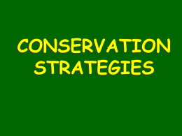 Conservation Strategies - aiss-dp-ess
