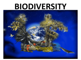BIODIVERSITY The variety of different species in an ecosystem. All