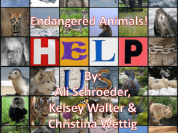 Endangered species - 5thPdAltmanLA8Persuasion