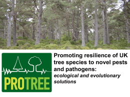 Promoting resilience of UK tree species to novel pests