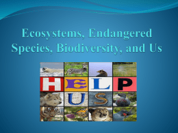 Ecosystems, Endangered Species, Biodiversity, and Us