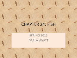 ch. 24 fish notes - Moore Public Schools