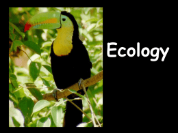 Ecology ppt - Worth County Schools