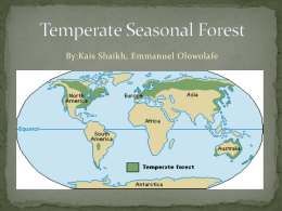 Temperate Seasonal Forest Finalx