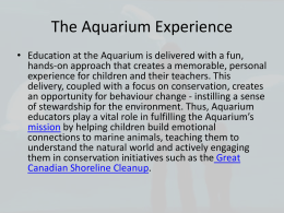 Aquarium PowerPoint That was shown in class