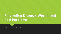 Preventing Disease, Weed, and Pest Problems