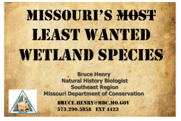 Missouri`s Least Wanted Wetland Species