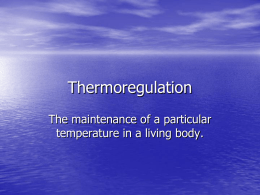Thermoregulation - Weber State University