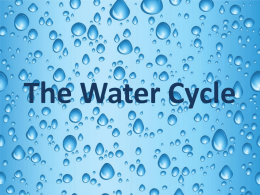 Water Cycle - ahbsciencereview