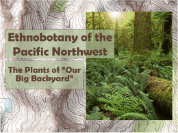 Plants of the Pacific Northwestx