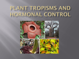 14.1 Plant Tropisms and Hormonal Control