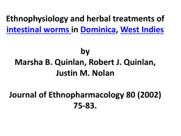 Herbal Worm Treatments in Dominica