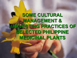 some cultural management & harvesting practices of selected