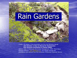 Rain Gardens - Florida-Friendly Landscaping™ Program