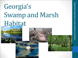 Georgia`s Swamp and Marsh Habitat Region