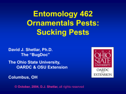 Ornamentals Pests - Sucking Pests (in blue)