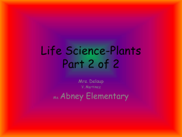 Life Science-Plants Part 2 of 2