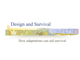 Design and Survival