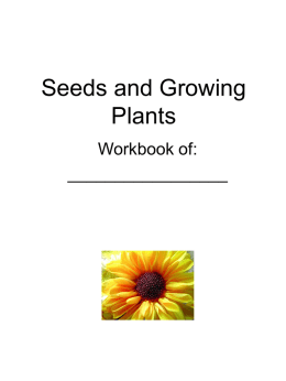 Seeds and Growing Plants - Latest News | UBC Let's Talk