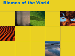 Biomes of the World - Doral Academy Preparatory